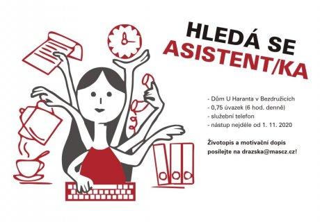 HLEDÁ SE ASISTENT/KA