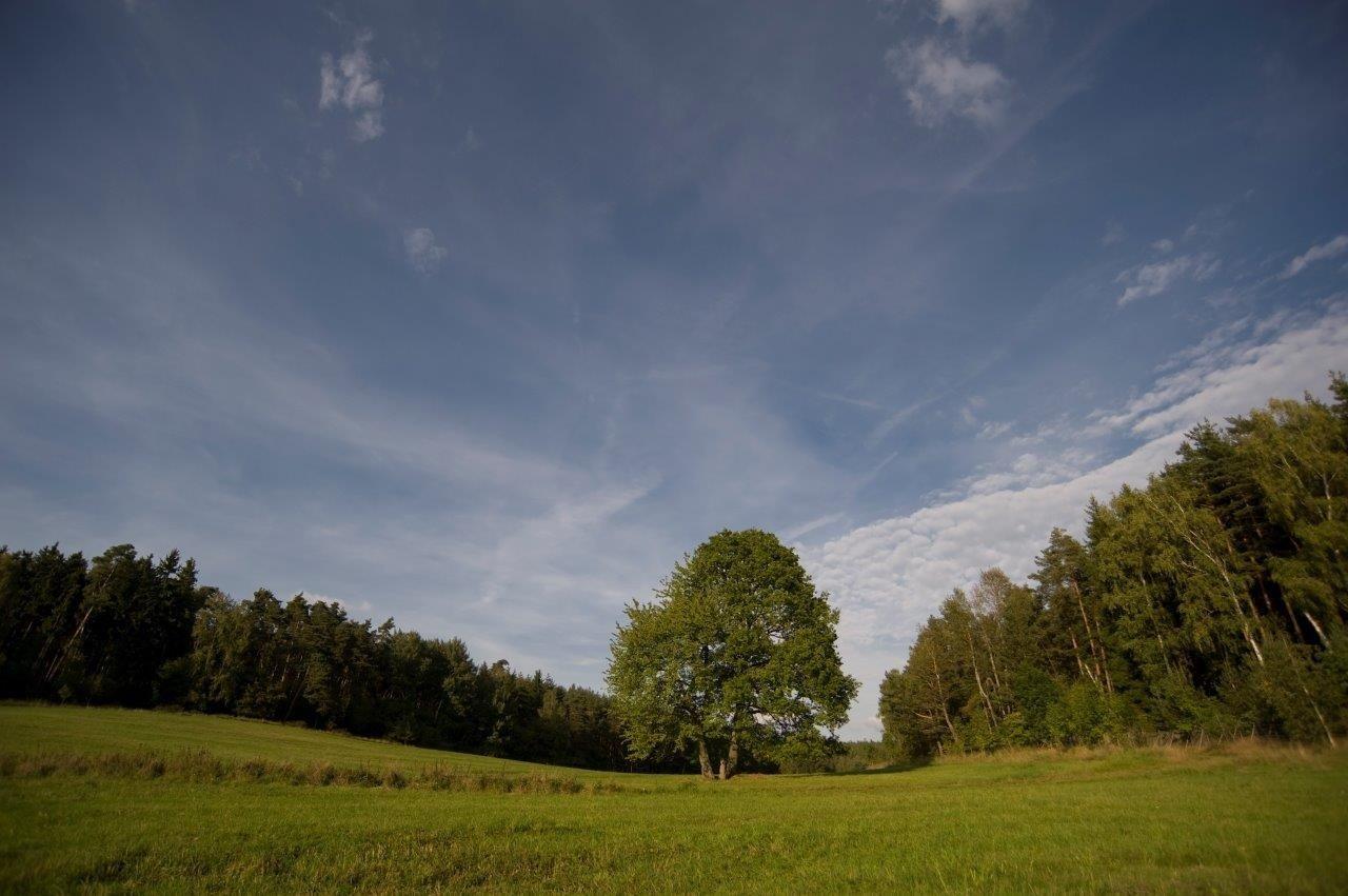 Podzimní granty podpoří krajinu i akce